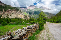 Взгляд на прикарпатских горах Стоковые Изображения