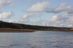 Взгляд на пляже осени Стоковая Фотография