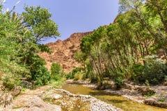 Взгляд на реке Todra в ущелье Todgha, Марокко Стоковая Фотография