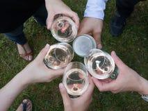 Взгляд на друзьях имея алкогольные напитки во время партии, конец-вверх Стоковые Фото