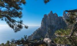 Взгляд на скалах на заднем плане выравнивается облаков и моря через зеленые ветви спруса Стоковая Фотография RF
