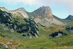 Взгляд на цепи горы в горных вершинах (Rofan) Стоковые Фото