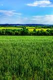 Взгляд на чехословакских полях Стоковое фото RF