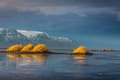 Взгляд на дюнах бросая их отражения на замороженном море Исландии На заднем плане снег Стоковые Фото