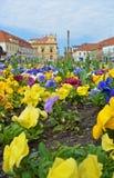 Взгляд на flowerbed на квадрате Чехословакский город Podebrady Стоковое Изображение