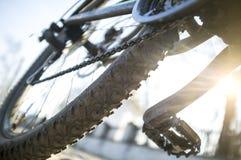 Взгляд низкого угла велосипеда outdoors в солнце Стоковая Фотография RF