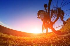 Взгляд низкого угла велосипедиста стоя с горным велосипедом на следе на заходе солнца Стоковое Изображение RF