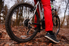 Взгляд низкого угла горного велосипеда катания велосипедиста на следе на восходе солнца в лесе Стоковые Фото