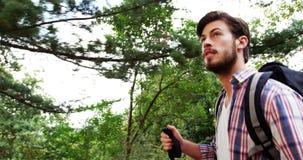 Взгляд низкого угла идти hiker видеоматериал