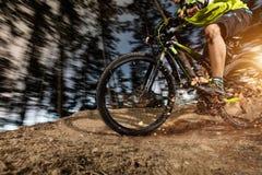 Взгляд низкого угла катания велосипедиста горы на следе Стоковые Фото