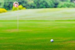 Взгляд низкого угла шара для игры в гольф на зеленом цвете Стоковое Изображение