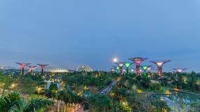 Взгляд ночи сада заливом Сингапуром Стоковое Фото