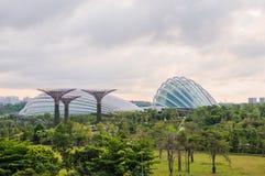 Взгляд дня рощи Supertree Стоковая Фотография