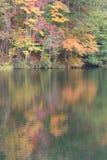 взгляд озера дня осени солнечный Стоковые Фото