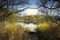Взгляд озера - пруда широкоформатный с деревьями стоковые изображения rf