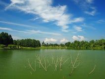 Взгляд озера Стоковое Изображение