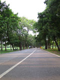 Взгляд дороги велосипеда в парке Стоковые Фотографии RF