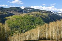 Взгляд осени над Vail, Колорадо Стоковое фото RF