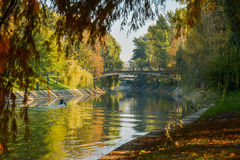 Взгляд осени реки Bega Стоковое фото RF