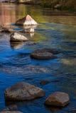 Взгляд от банка реки девственницы Стоковая Фотография