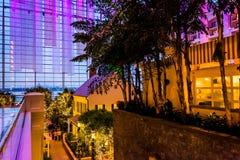 Взгляд от балкона в курорте Gaylord национальном, национальное Har Стоковые Фото