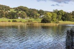 Взгляд от берега озера на воде Esthwaite в районе озера Стоковые Изображения