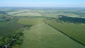 Взгляд от высоты для того чтобы позеленеть поля с пшеницей в России стоковая фотография