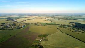 Взгляд от высоты для того чтобы позеленеть поля с пшеницей в России стоковое фото