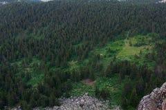 Взгляд от высот к лесу и следам леса Лето в горах Взгляд от гор Природа южной стоковые фотографии rf