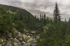 Взгляд от гор Словакии Tatra следа западных Стоковая Фотография RF