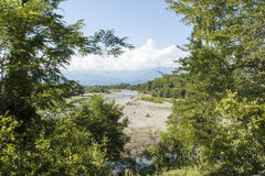 Взгляд от за деревьев Стоковое фото RF