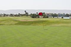 Взгляд от зеленого цвета на поле для гольфа стоковые фотографии rf