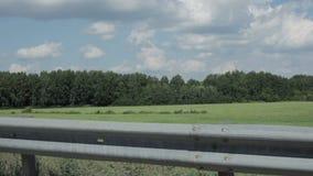 Взгляд от окна вождения автомобиля в видеоматериал