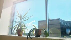 Взгляд от окна офиса на небе и бизнес-центре Стоковое Фото