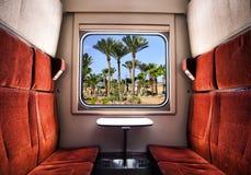 Взгляд от окна поезда на зеленых ладонях и голубом небе стоковые изображения