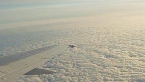 Взгляд от окна самолета летания акции видеоматериалы