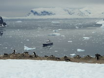 Взгляд от острова Danco Стоковая Фотография