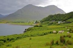 Взгляд от полуострова Aird к na Caillich Beinn горы, острову Skye, гористым местностям, Шотландии, Великобритании Стоковое фото RF