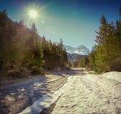 Взгляд от пропуска d'Isoard Col, Альпы, Франция стоковые фотографии rf