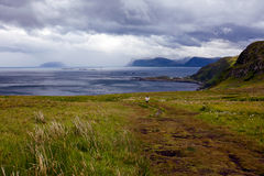 Взгляд от скал птицы на океане и облаков в Норвегии Стоковая Фотография RF