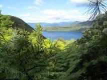 Взгляд от следа ферзя Шарлотты, Новая Зеландия Стоковые Изображения