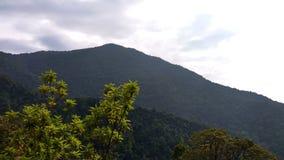 Взгляд от следа Kodachadri Trekking Стоковые Фото