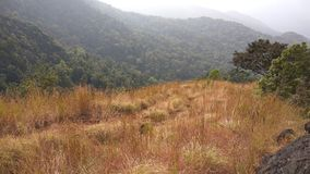 Взгляд от следа Kodachadri Trekking Стоковая Фотография
