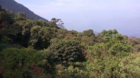 Взгляд от следа Kodachadri Trekking Стоковая Фотография RF