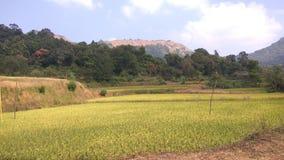 Взгляд от следа Kodachadri Trekking Стоковые Фотографии RF