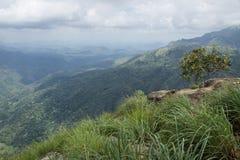 Взгляд от утеса Эллы, Эллы, Шри-Ланки Стоковые Фото