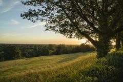 Взгляд от холма Ричмонда в Лондоне над ландшафтом во время beautifu Стоковая Фотография