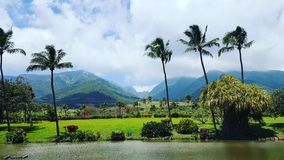 Взгляд долины Waikapu Стоковое Фото