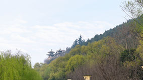 взгляд пагод в зеленом саде Стоковое Фото