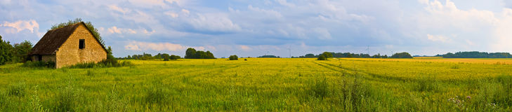 Взгляд панорамной сельской местности широкий старого загубленного дома с деревьями позади Стоковое Изображение RF
